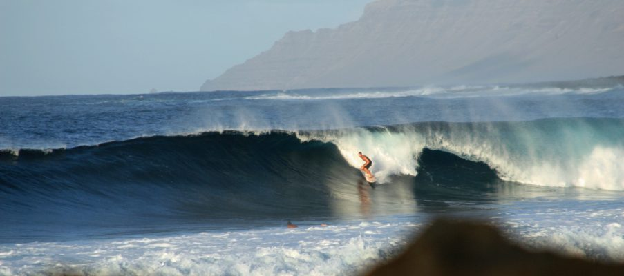 SONSTIGE SURFBOARDS